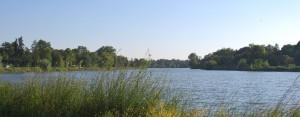 summer view of lake slider